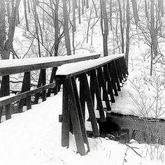 snow bridge  Canoe Creek State Park  Pennsylvania