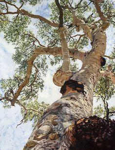 Botanical Illustration, Botanical Art, Illustration Art, Abstract Landscape, Landscape Paintings, Tree Paintings, Pretty Pictures, Pretty Pics, Building Art