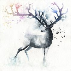 Deer, stag with Rainbow horns in watercolour High quality reproductions of my original paintings. I spent a lot of time finding the perfect printer to. Art Watercolor, Watercolor Animals, Cervo Tattoo, Hirsch Tattoo, Art Tumblr, Deer Art, Art Plastique, Painting & Drawing, Body Painting