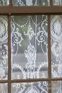 Lace Curtains Photograph  - Lace Curtains Fine Art Print