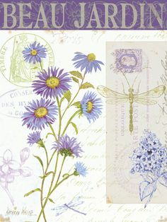 Purple daisies, dragonfly, postmarks