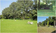 Britzer Garten  http://euseionde.blogspot.de/2012/09/britzer-garten-berlim.html