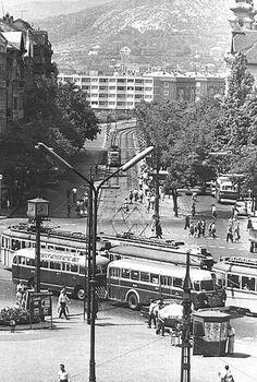 1963. A csuklós busz elődje a Móricz Zsigmond körtéren.