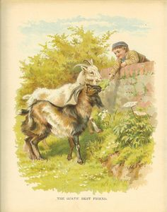 Edwardian 1900s Ernest Nister Childrens Print Young Boy Wearing Cap Leans Over Stone Wall Feed Goats In Field Antique Colour Bookplate