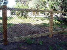 Cheap garden fence ideas - Deer Netting - Click Pic for 25 Garden Fencing Ideas - Gartenbau Cheap Garden Fencing, Diy Garden Fence, Garden Edging, Backyard Fences, Diy Dog Fence, Backyard Ideas, Pool Fence, Vegetable Garden Fences, Deer Garden