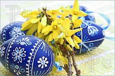 Photo of decorated eggs wth forsythia