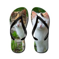 Calico cats flip flops  #cat #flipflops #sandals #footwear #fashion #animal #pets