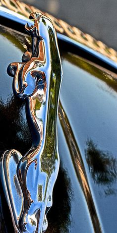 Black Jag II Photograph - Black Jag II Fine Art Print ~ Brought to you by agents of at for Jaguar Xj, Jaguar S Type, Jaguar Cars, Black Jaguar, Audi, Porsche, My Dream Car, Dream Cars, Lamborghini