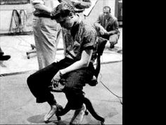 Elvis Presley - I need your love tonight (take 14) - YouTube