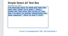 Creating One Click Select All Text Boxes For Frontend Display In WordPress