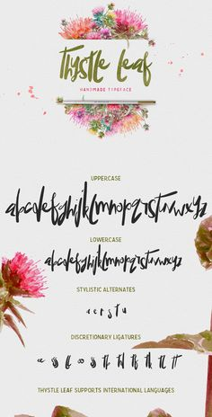 OFF Thystle Leaf Typeface - Display Font - Handmade semi script with irregular baseline AUD) by creativequbedesign Hand Lettering Alphabet, Typography Letters, Brush Lettering, Alphabet Fonts, Chalkboard Lettering, Lettering Ideas, Alphabet Soup, Lettering Styles, Lettering Tutorial