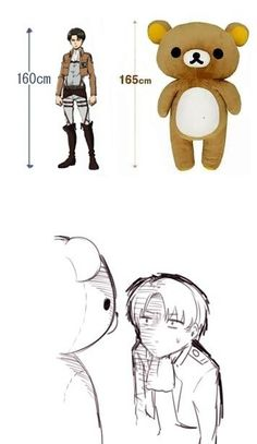 Levi is shorter then Big Teddy Bear... Really funny...