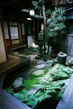 la maison japonaise plein de plantes vertes
