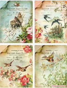 Винтажные картинки с птичками. Картинки для творчества