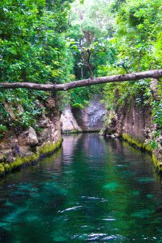 Xcaret is majestic archaeological park located in Riviera Maya, Cancun in the Mexican Caribbean Sea shore.