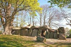Essé, La Roche aux Fées (fairies rock), about 19 miles southeast of Rennes.  Regarded as Europe's best preserved dolmen.  #France