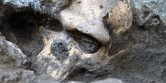 Oddball Skull Suggests We Were Wrong About Early Humans