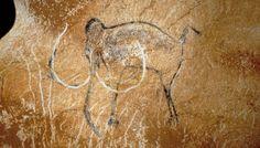 Grottes Chauvet - Joli mammouth, peint il y a 34 000 ans