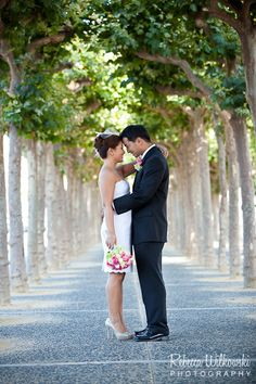 SF city hall wedding - just outside- across the building is a park with these awesome arching trees