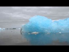 Really blue iceberg in Pleneau Bay 7 Continents, Antarctica, Ice, Baby, Infants, Baby Humor, Babies, Infant, Doll