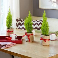 If it's tied in a bow, it's got to be good. Plant lemon cyprus trees in mini containers or soup cans, then using hot glue, wrap in burlap. A Santa-red bow makes them present-ation ready!/