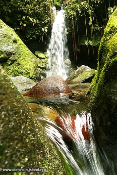 Waterfall at the Emerald Pool - Photo | Dominica Island: Photo Travel Guide