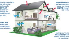 Making your home more pleasant and cool without running air-conditioner.