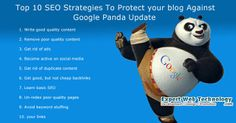 Expertwebtechnology.com- Top 10 SEO Strategies To Protect your blog Against Google Panda Update.