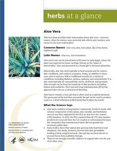 Aloe Vera. Full document available at http://nccam.nih.gov/health/herbsataglance.htm