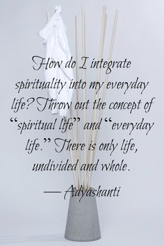 """""""How do I integrate spirituality into my everyday life? Throw out the concept of 'spiritual life' and 'everyday life'. There is only life, undivided andd whole."""" - Adyashanti"""