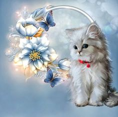 Cat DIY Diamond Painting Embroidery Cross Craft Stitch Art Kit Home Decor White Kittens, Cats And Kittens, Baby Animals, Cute Animals, Butterfly Kit, 5d Diamond Painting, Cross Paintings, Cat Drawing, Cat Art