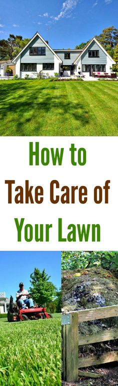 How To Take Care of Your Lawn-We like to achieve our lawn care goalsthe green way. Nothing will make us happier than if all of us had green lawns kept luscious with #green methods. #greenlawns  #ecofriendlylawncare #lawncare  #lawn #yard