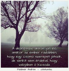 Feldmár András idézete a depresszióról.