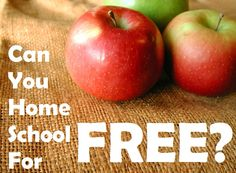 Living and Learning at Home: Can You Homeschool for Free? (And lots of other great ideas!)
