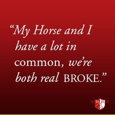 My horse and I have a lot in common, we're both real broke! #horse #horses #equestrian #showjumping #eventing #dressage #barrelracing
