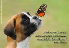 Liebe ist ein Zustand, in dem das Glück eines anderen essenzielle für dich ist. Lust auf mehr Lebensfreude und Zitate? Dann schau vorbei: www.lebensfreude-evelyn-wenzel.com