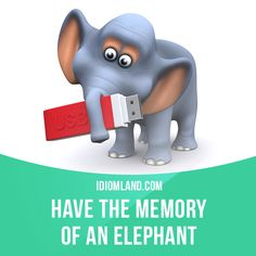 """""""Have the memory of an elephant"""" means """"to have a very good memory"""". Example: How did you remember her name? You must have the memory of an elephant. #idiom #idioms #saying #sayings #phrase #phrases #expression #expressions #english #englishlanguage #learnenglish #studyenglish #language #vocabulary #dictionary #grammar #efl #esl #tesl #tefl #toefl #ielts #toeic #englishlearning #elephant"""
