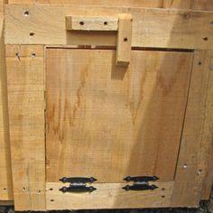 Chicken Coop Door with drop down ramp
