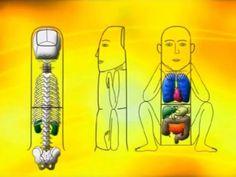 Приемы Су-джок терапии для здоровья