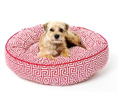 The finest bed your dog will ever sleep in! Your pet will sleep in comfort in our most luxurious of beds. The nesting concept allows for round the clock snuggli