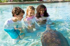5 Resort Kids' Clubs Your Family Will Love
