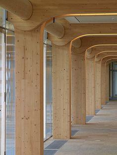 structure en bois immeuble Tamedia à Zurich