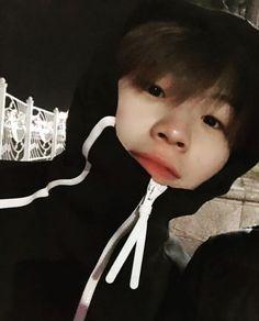 Allkpop: a girl in a bay group? A project SM was planing through the … Seventeen Woozi, Seventeen Debut, Seungkwan, Mingyu, Jonghyun, Jimin, Vernon Chwe, Hip Hop, Won Woo