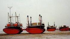arktos craft - Google 検索