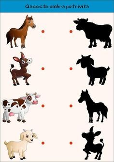 Find correct shadow farm animals collection vector image on VectorStock Preschool Learning Activities, Animal Activities, Preschool Lessons, Preschool Worksheets, Preschool Activities, Emotions Preschool, Numbers Preschool, Community Helpers Preschool, Kids Education