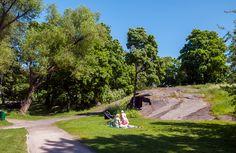 Sibbari on töölöläisten suosima piknikpuisto [Hemmo Rättyä]