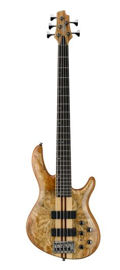 Cort Artisan A5 Custom-SP Bass