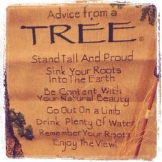 Advise to live by