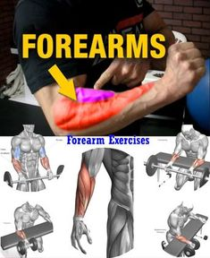 6 Of The Best Forearm Exercises For Muscle Growth And Strength For Proportional Arms, 6 Of The Best Forearm Exercises For Muscle Growth And Strength For Verhältnisgleich Arms For really big arms, stop listening to the bro science and t. Big Biceps Workout, Gym Workout Tips, Weight Training Workouts, Fitness Workouts, Fitness Motivation, Forarm Workout, Workout Fitness, Workouts For Men, Mma Workout
