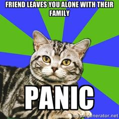 Introvert Cat - Friend leaves you alone with their family...PANIC